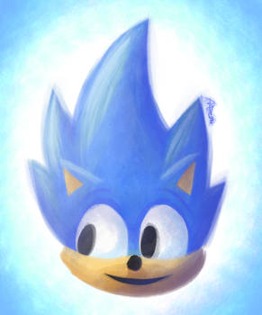 My Name is Sonic