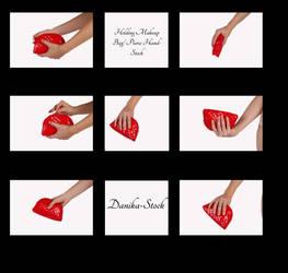 Holding Makeup Bag Hand Stock by Danika-Stock