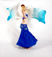 Belly Dancing - Fan Veils - Spinning Back View by Danika-Stock