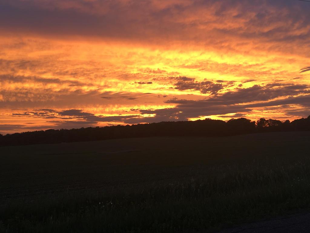 A Farm Sunset  by roxasroxs