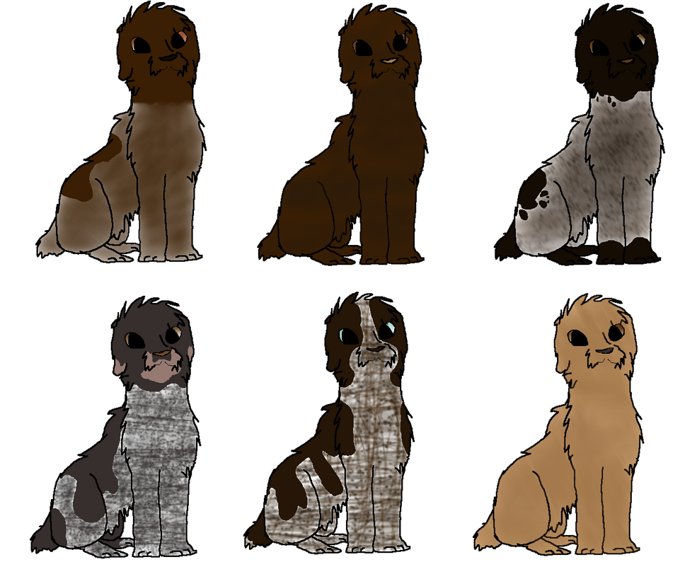 Wirehaired Pointing Griffon Adopts OPEN by NorthernFoxRanch on ...