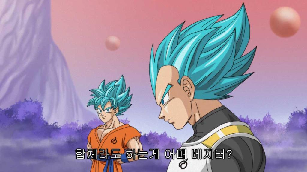 Super Saiyan God Super Saiyan songoku vegeta by oume12