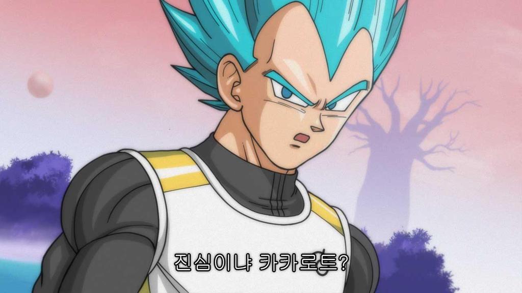 Super Saiyan God Super Saiyan songoku vegeta2 by oume12