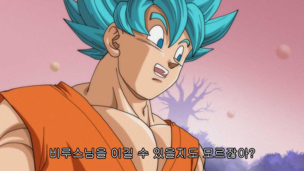 Super Saiyan God Super Saiyan songoku vegeta3 by oume12