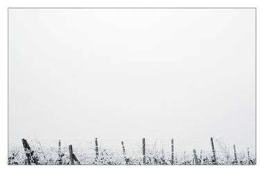 Winter spikes