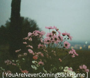 NeverComingBack...