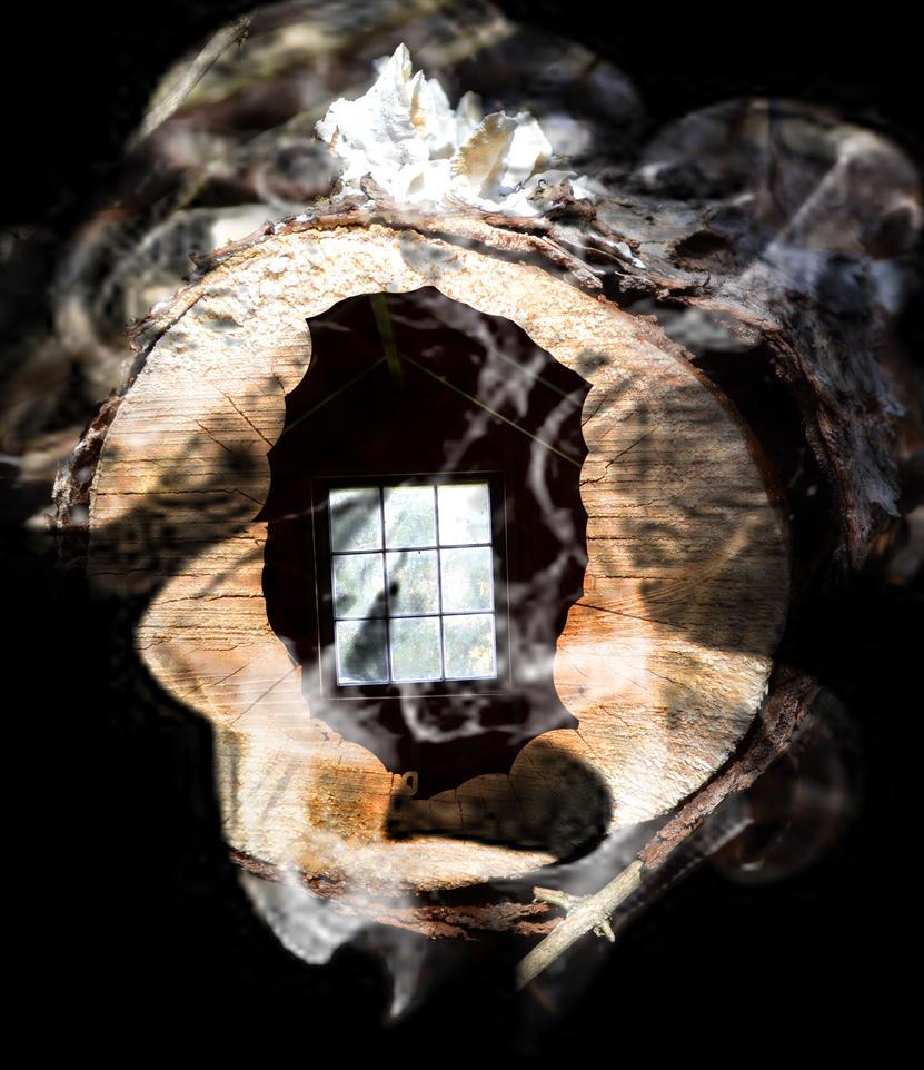 creepy house by lexie11