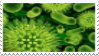 Bacteria Stamp by Parasitic-Quarantine