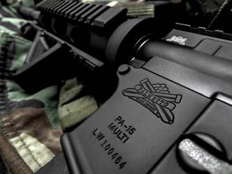 Palmetto State Armory AR-15 by dhrandy
