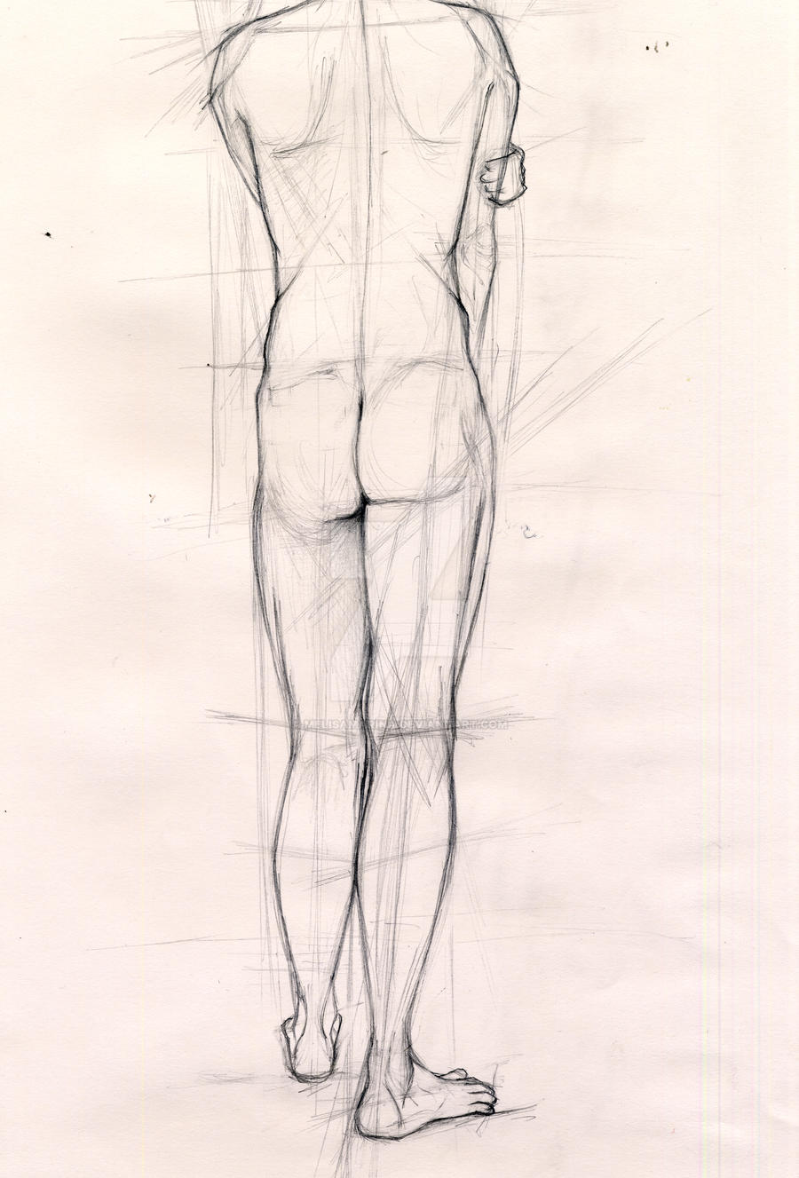 Life Drawing Human Body By Melisamarina On Deviantart