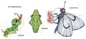 010 Caterpie, 011 Metapod, 012 Butterfree