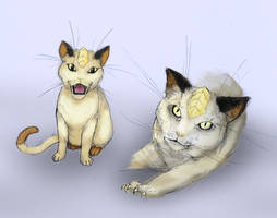Meowth by RtRadke