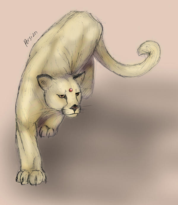 Persian by RtRadke