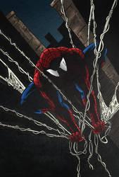 The Amazing Spider-Man by RiffThirteen