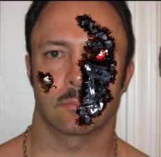 WingDiamond's Profile Picture