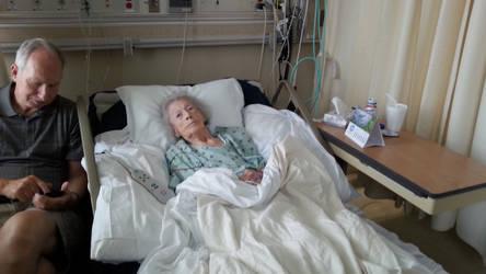 Rest In Peace Grandma Kitty by WingDiamond