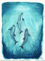 Song of the Vaquita by Ahzuriel