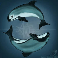 Spiraling - Vaquita and Maui's by Ahzuriel