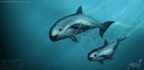 Treacherous Waters (2) - Vaquita Art, Amber Marine