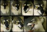 Personal Werewolf mask