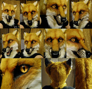 Red fox mask early 2013
