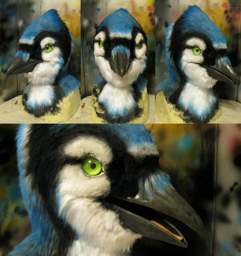 Bluejay With Updated Eyes! By Crystumes On DeviantArt