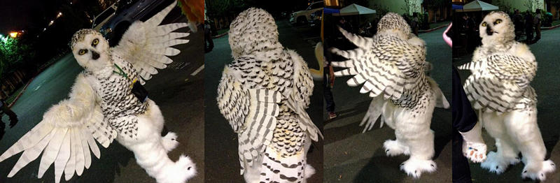 Snowy owl full costume! by Crystumes ... & Snowy owl full costume! by Crystumes on DeviantArt