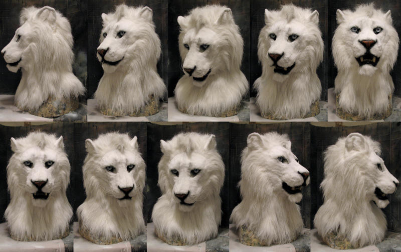 White lion face images - photo#28