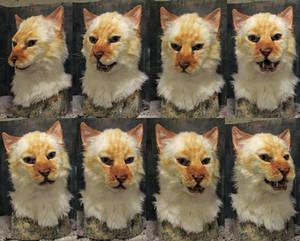 Makaveli cat mask