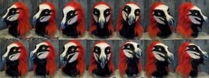 Bearded vulture werewolf mask