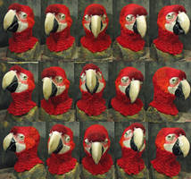 Scarlet macaw mask by Crystumes