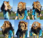 Lion mask worn