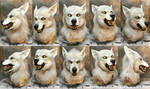 White snarly werewolf mask and gloves SOLD