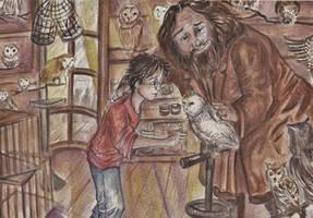 Meeting Hedwig by HogwartsHorror