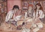Trio Study Version 2