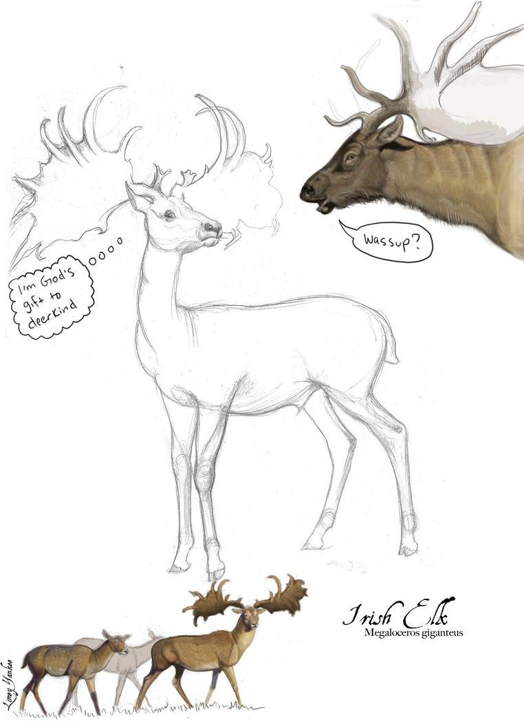irish elk fun by limey yankee on deviantart