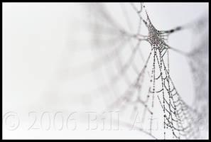 Bejeweled Lines by billsabub