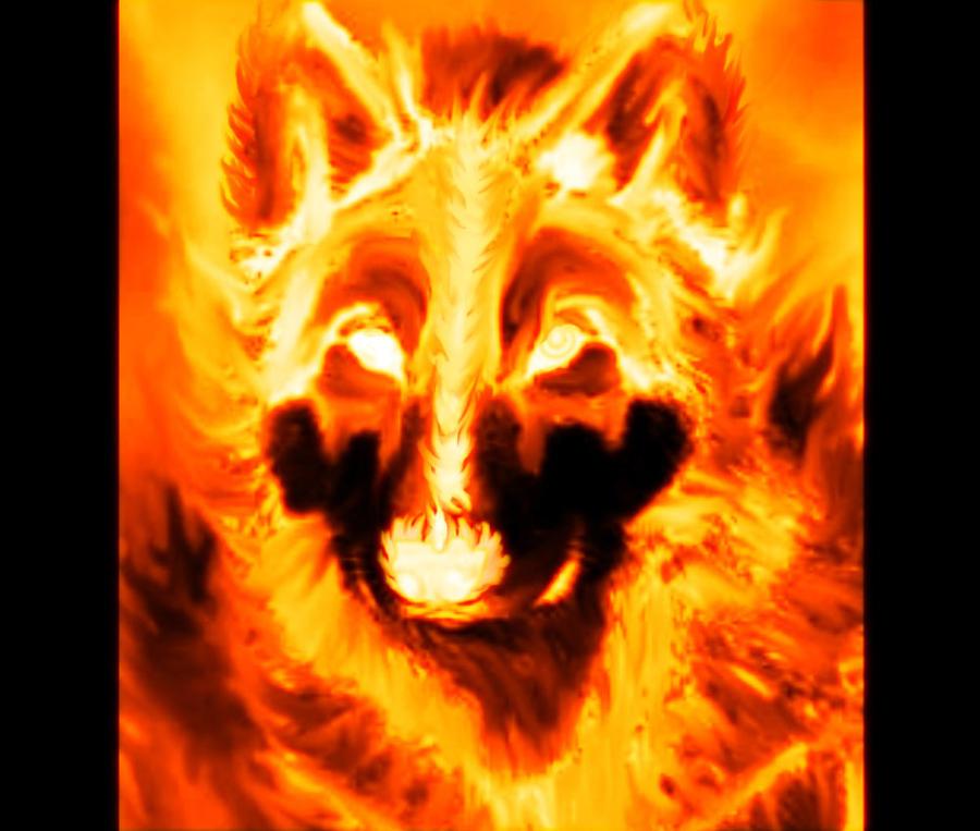 http://fc04.deviantart.net/fs71/i/2010/294/d/f/fire_wolf_2_by_lamar823-d318y6v.jpg