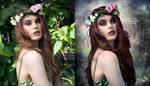 Serenity - Before and After by EstherPuche-Art