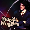 Stupid Muggles -- Harry, AVPM by cuttlefishbella