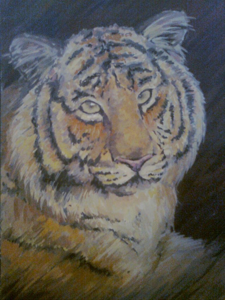 Tiger by Rio-Rey