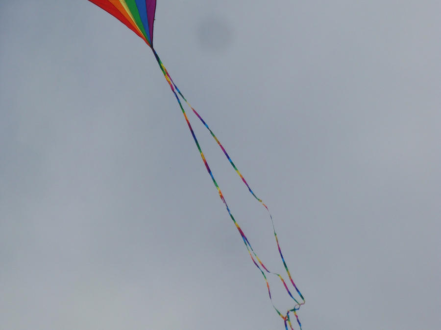 windswept by azriel1014