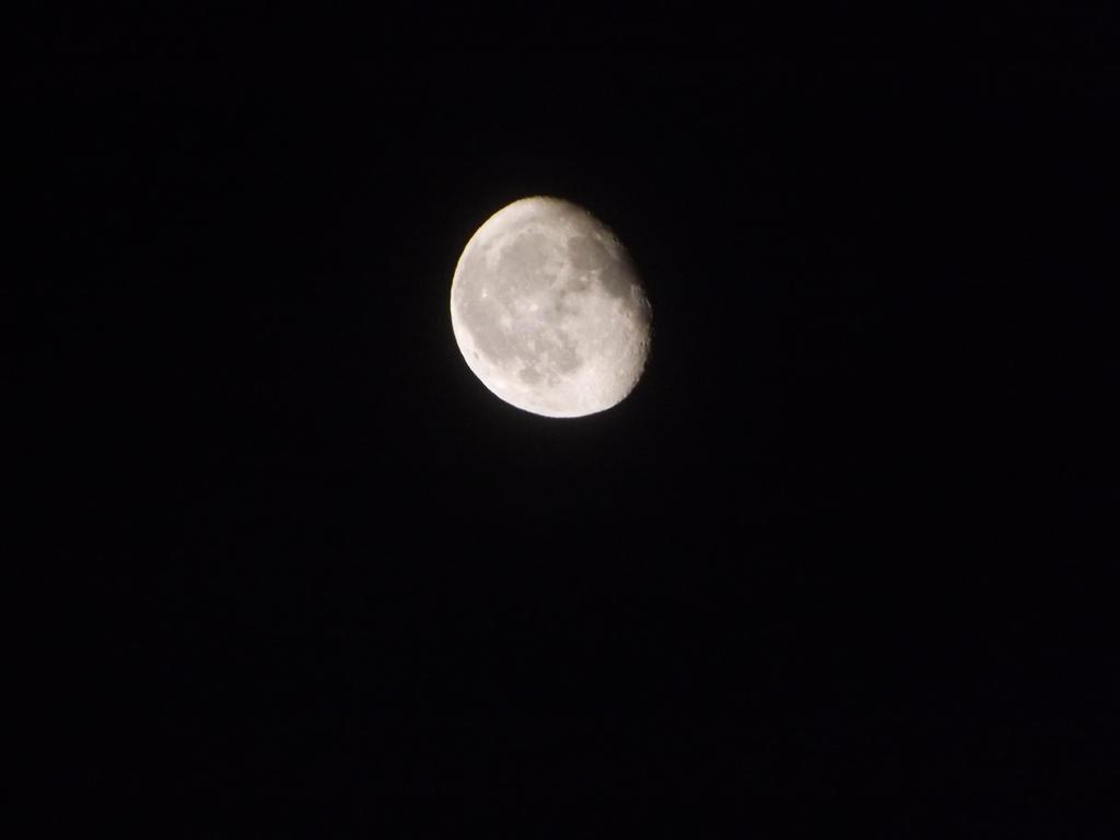 Moon by Apkx