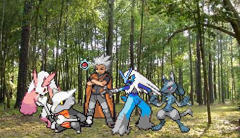 Team Blaze- in the forest by Blaster25