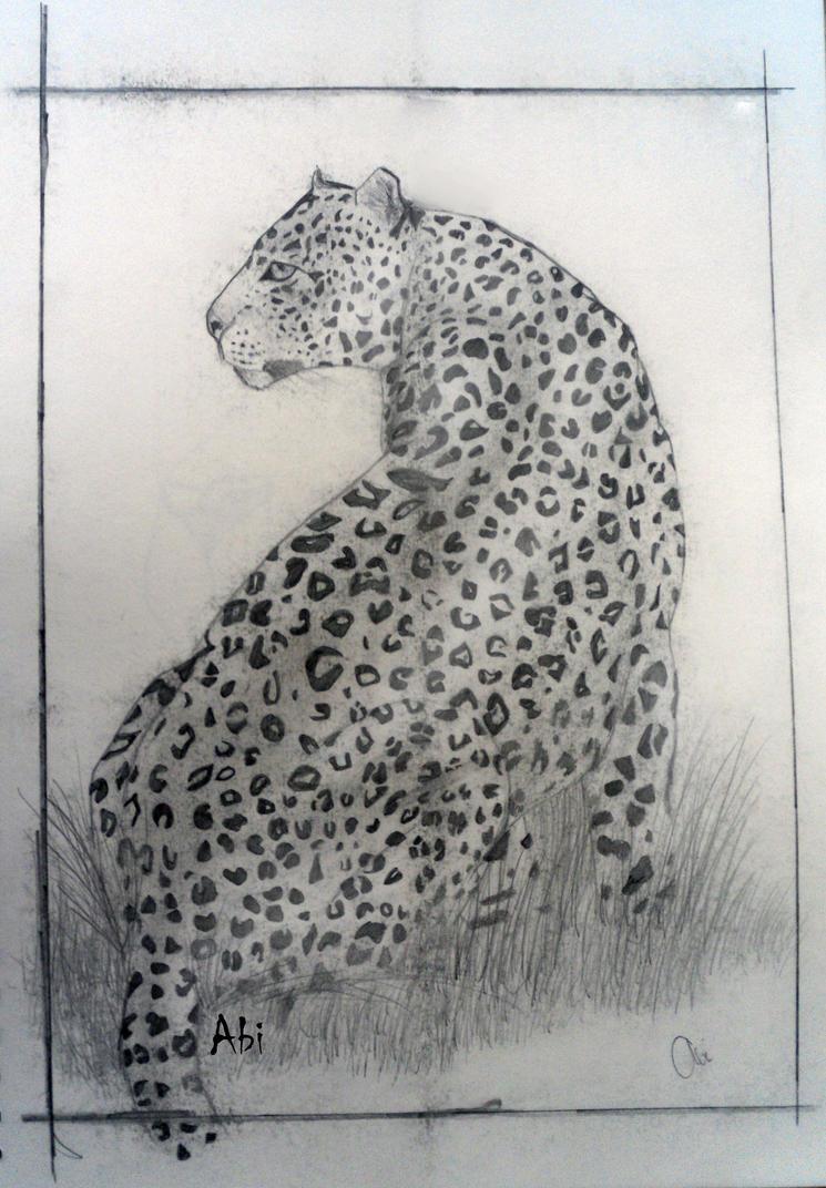 Leopard Pencil Drawings Pencil Drawing - Leopa...