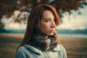 Autumn by DmitryElizarov