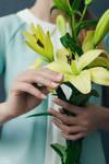 Flower Series: Lily #3 by DmitryElizarov