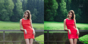 The woman in red (before and after) by DmitryElizarov