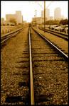 Streetcar Rails