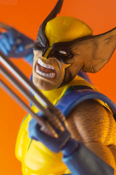 The Rage of a Wolverine